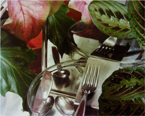 Untitled, 1977 - C-Print - 40,5 x 50,5 cm - ed 3/3