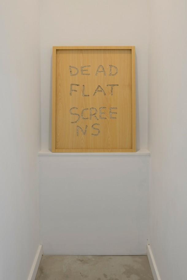 PIETERJAN GINCKELS, Dead Flat Screen, 2013